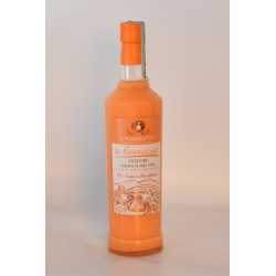 Melon cream 50 cl - 17%